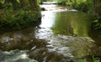 Interventions sur les cours d'eau